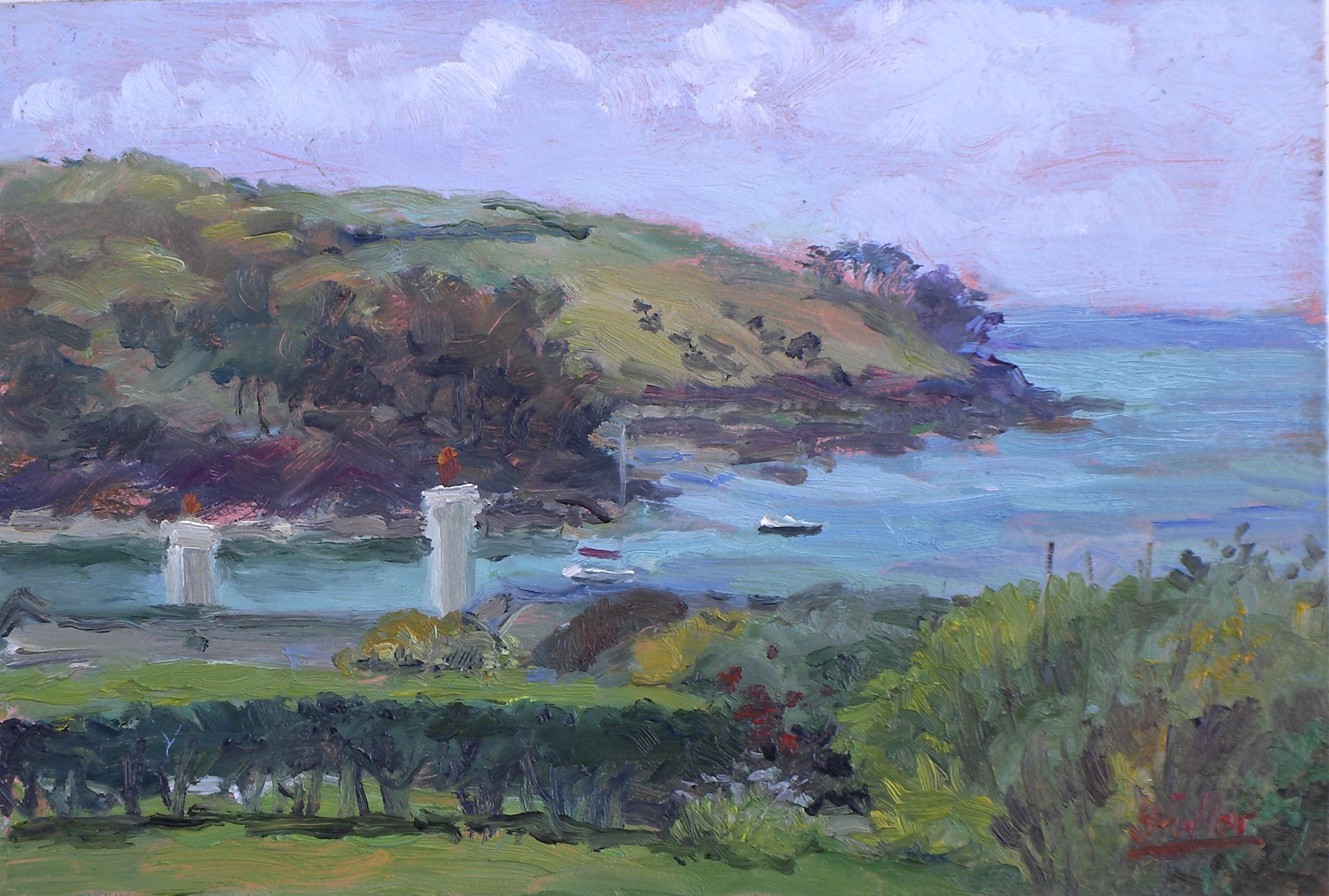 741 St Mawes harbour from Polvarth Point